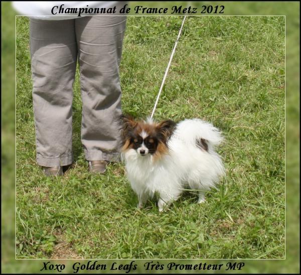 xoxo-a-7-mois-chpt-de-france-2012-1.jpg