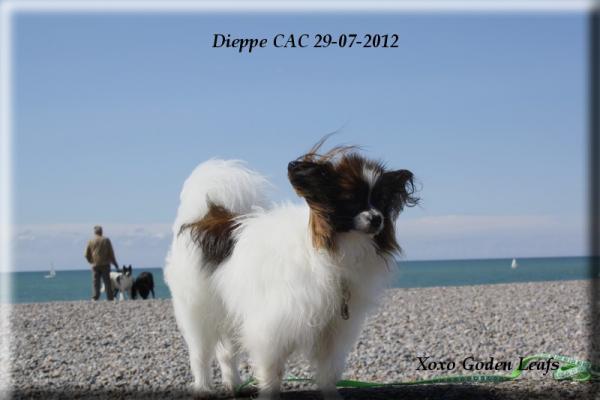 xoxo-dieppe-cac-3.jpg