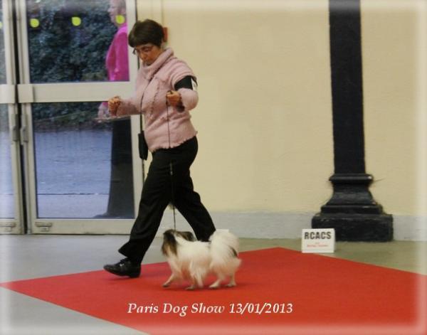 xoxo-paris-13-01-2013-6.jpg