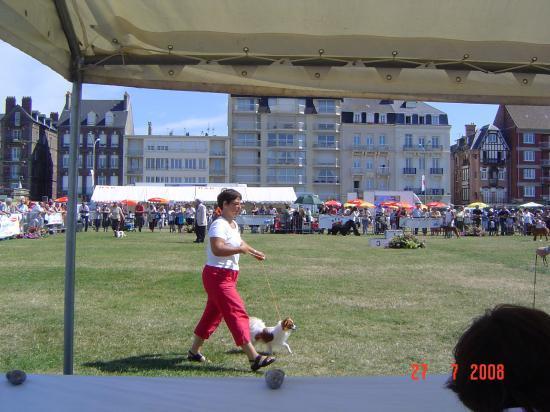 expo Dieppe 07/08