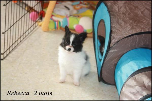 Rebecca 2 mois 4