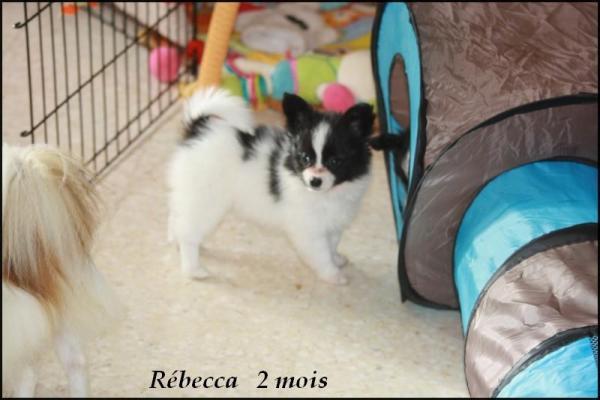 Rebecca 2 mois 6