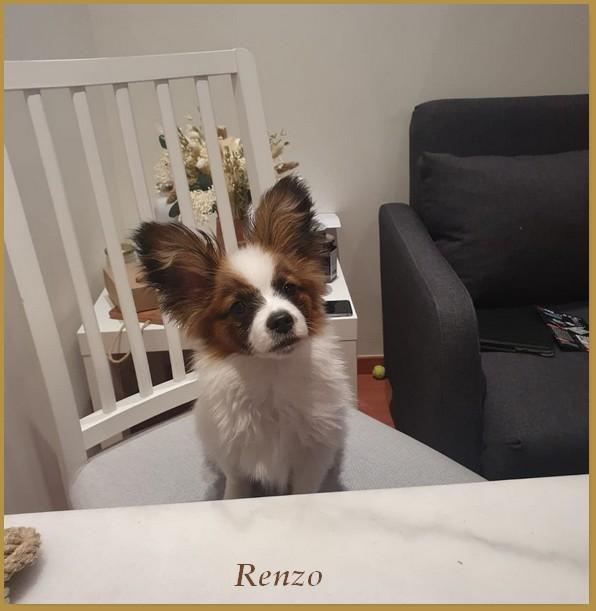 Renzo 6 mois 2