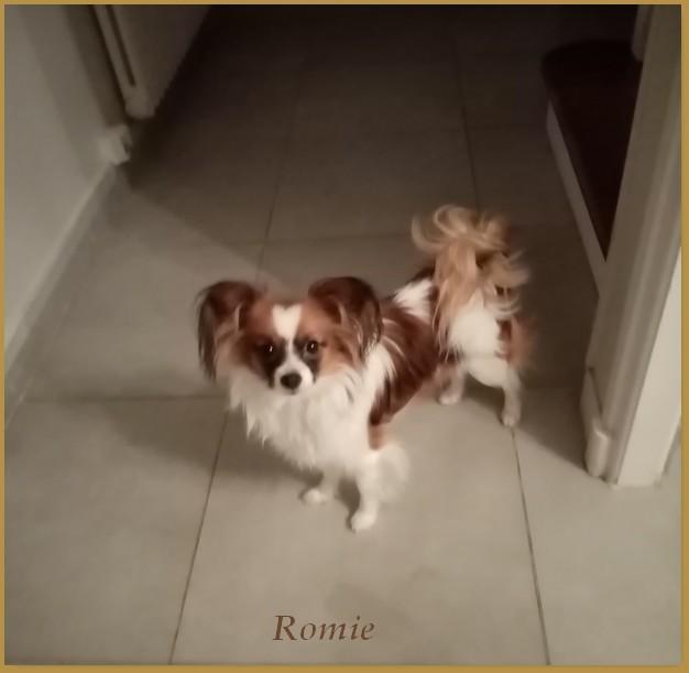 Romie 1 an 2