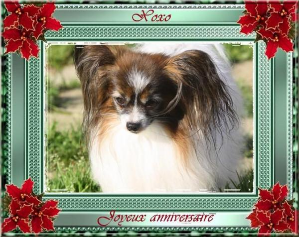 Xoxo 9 ans